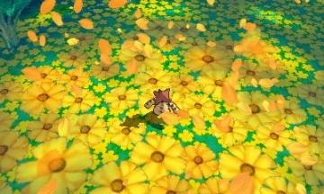 アキウタゲ草