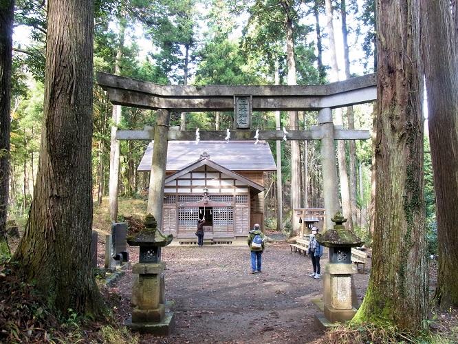 五社神社・本殿