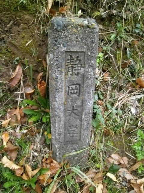 かぶと塚公園 (7)