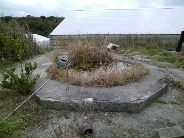 遠江射場その1 (7)