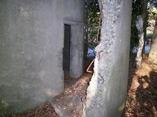 鉾田監的壕 (6)