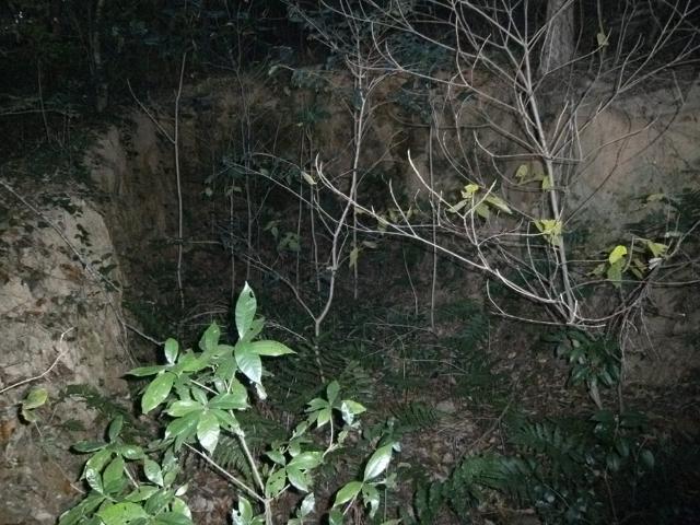 小塩津観測所 (12)
