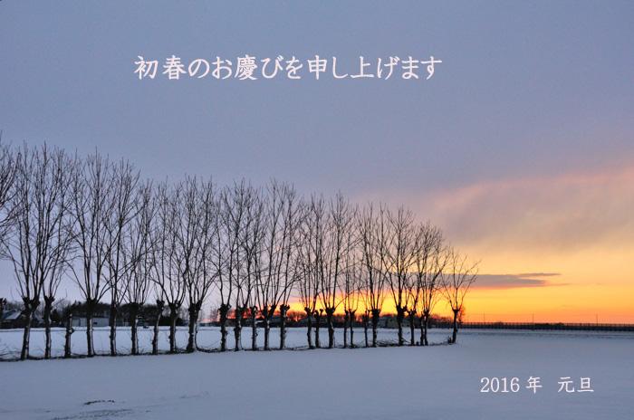 2015122904.jpg