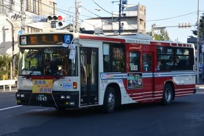 DSC_2233-m.jpg