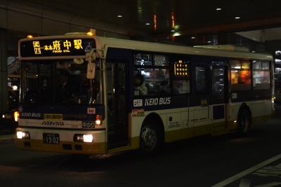 DSC_2556-m.jpg
