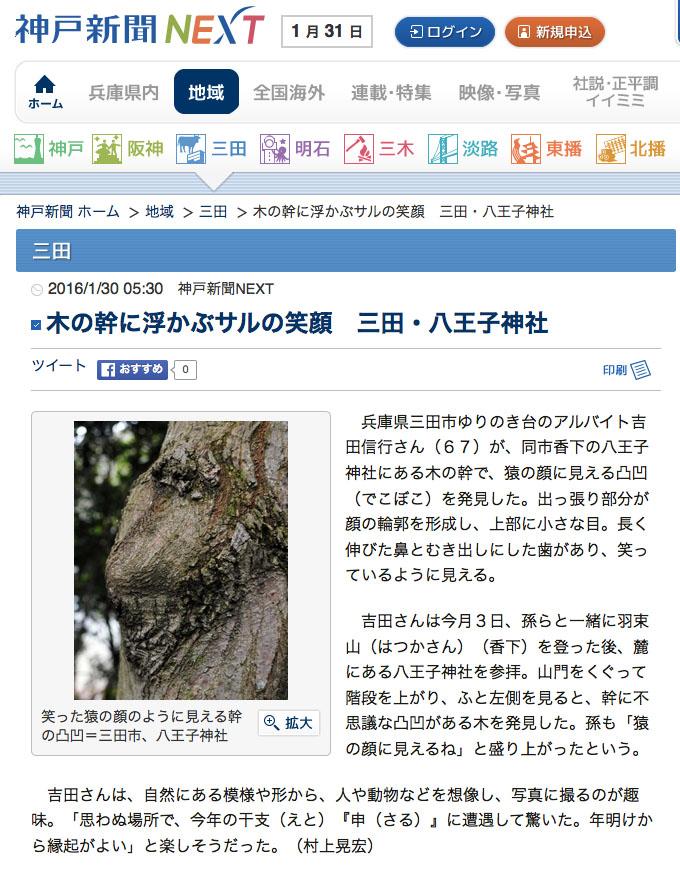 木の幹に浮かぶサルの笑顔 三田・八王子神社
