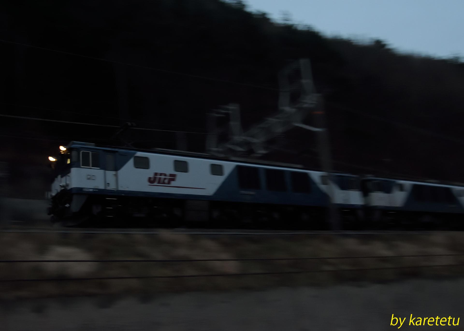 160116cow_01