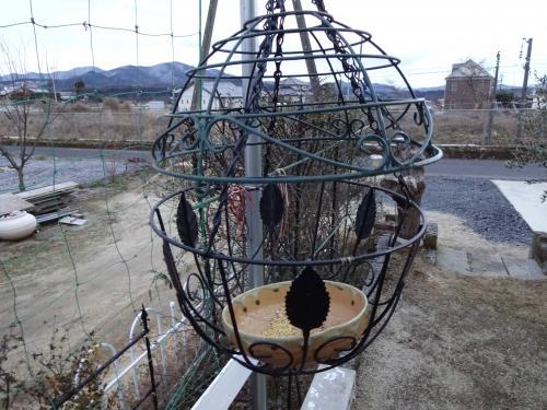 野鳥の餌 3号