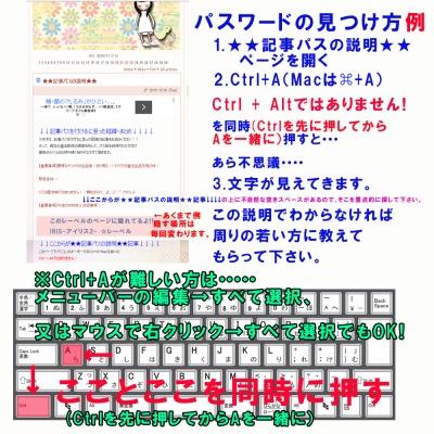 記事パスヒント4 (2)