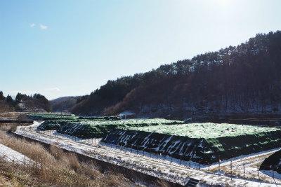 2016.1.11 葛尾村・田村市都路 ぽこ&ノアママ 5
