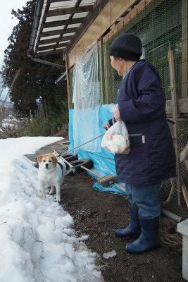 2016.2.4 浪江町・都路 ぽこ 31