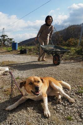 2015.12.22  葛尾村・都路 ぽこ&ノアママ 3