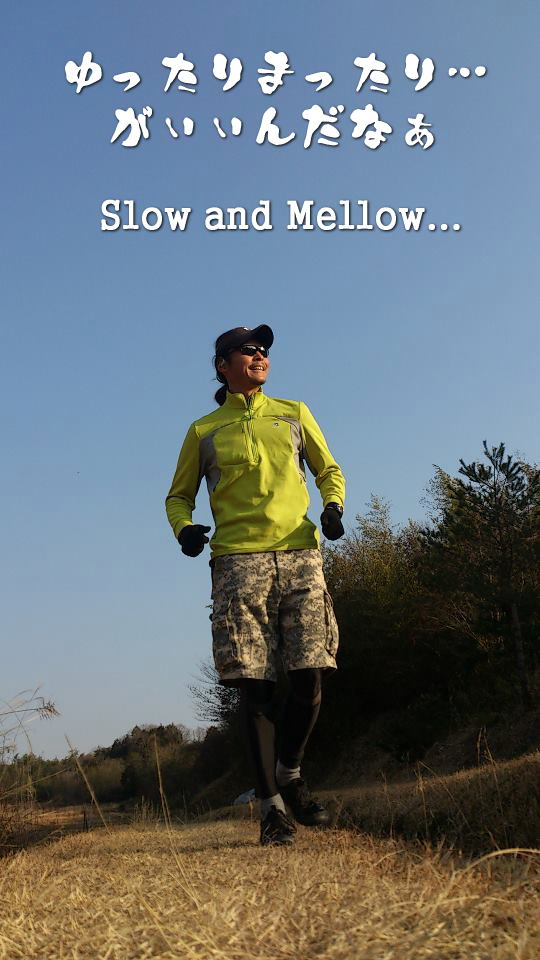 slow_and_mellow2.jpg