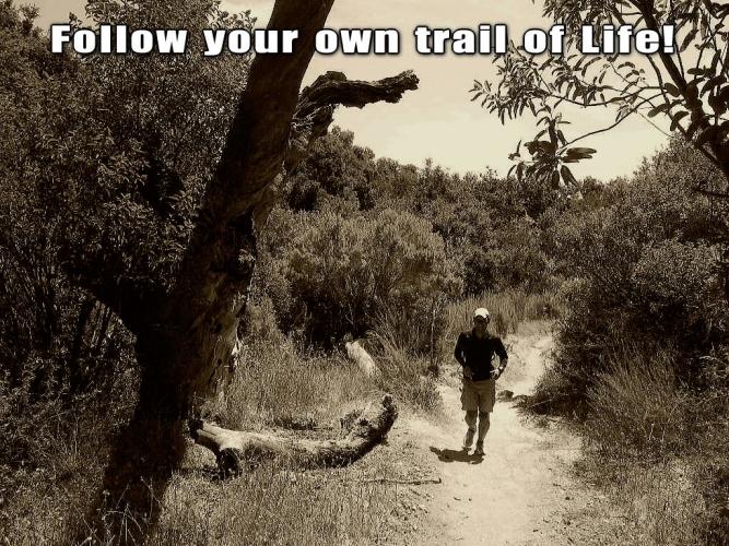 trail_of_life_20130605100141_20160114151455501.jpg