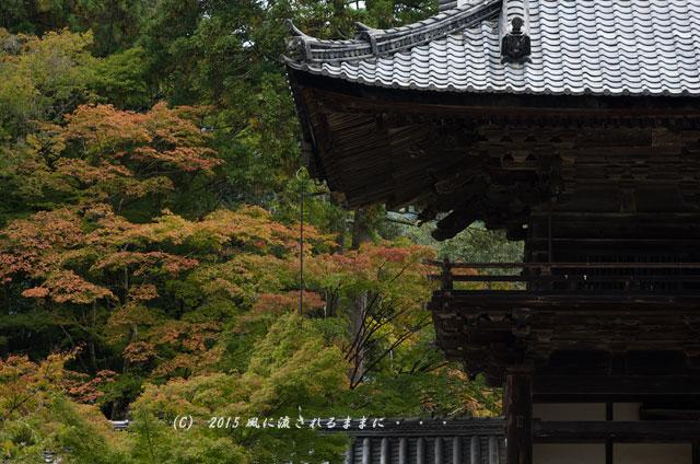 2015年10月撮影 京都・神護寺の風景2
