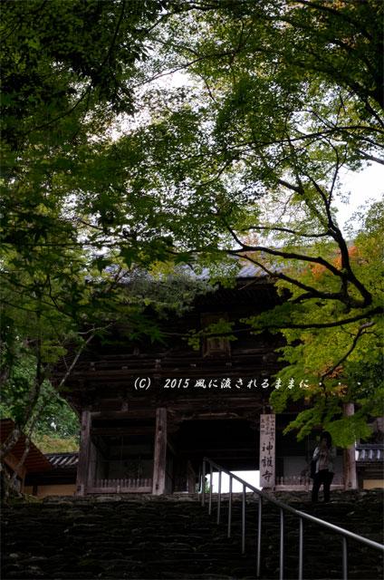 2015年10月撮影 京都・神護寺の風景9