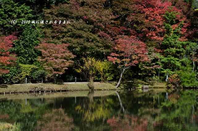 2015年10月撮影 奈良・円成寺の紅葉10