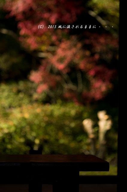 2015年11月撮影 奈良・芳徳寺の紅葉8
