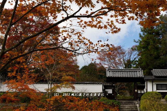 2015年11月撮影 奈良・芳徳寺の紅葉1