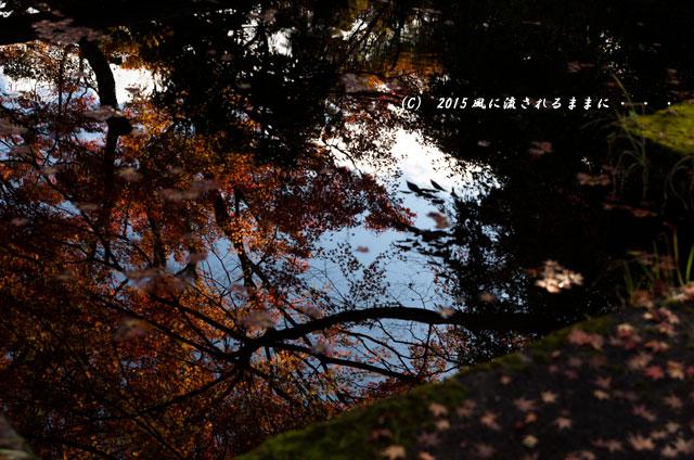 2015年11月撮影 奈良・芳徳寺の紅葉10