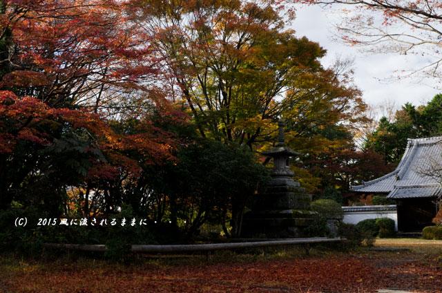 2015年11月撮影 奈良・芳徳寺の紅葉3