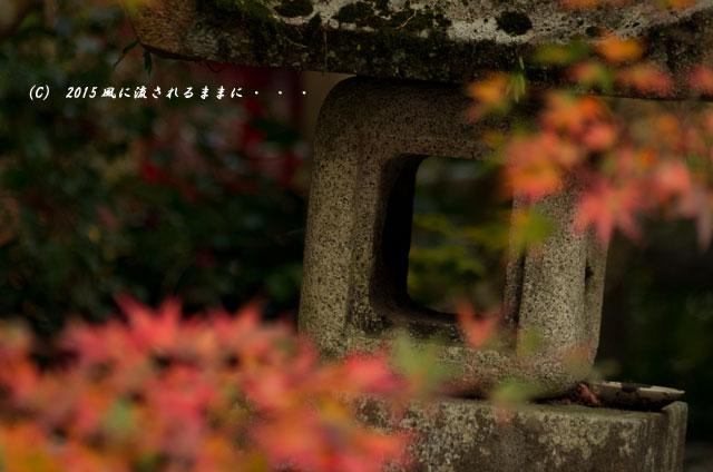 2015年11月撮影 京都・鍬山神社の紅葉8