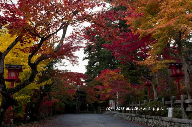 2015年11月撮影 京都・鍬山神社の紅葉11