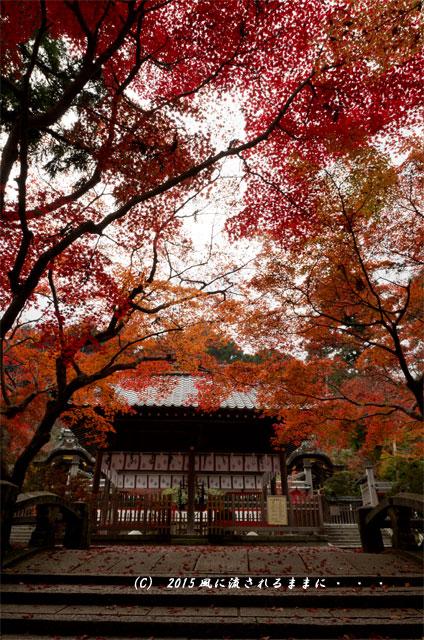 2015年11月撮影 京都・鍬山神社の紅葉12