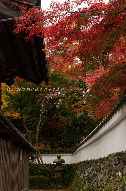2015年11月撮影 京都・鍬山神社の紅葉5