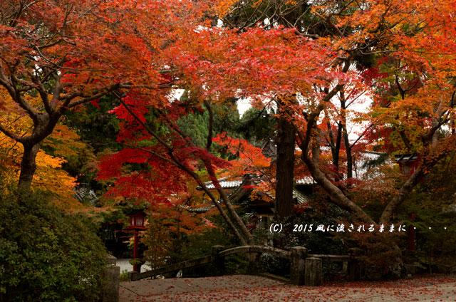 2015年11月撮影 京都・鍬山神社の紅葉7