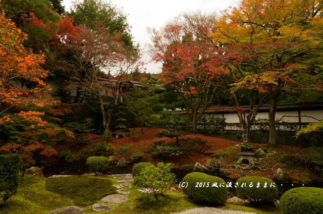 2015年11月撮影 京都・泉涌寺 御座所庭園の紅葉2