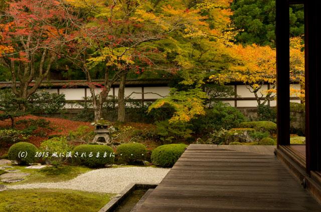 2015年11月撮影 京都・泉涌寺 御座所庭園の紅葉3