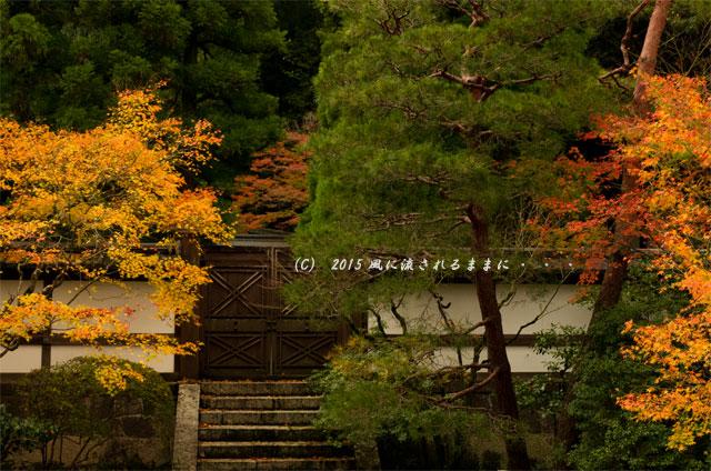 2015年11月撮影 京都・泉涌寺 御座所庭園の紅葉5