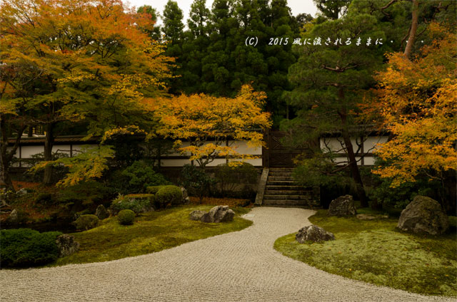 2015年11月撮影 京都・泉涌寺 御座所庭園の紅葉7