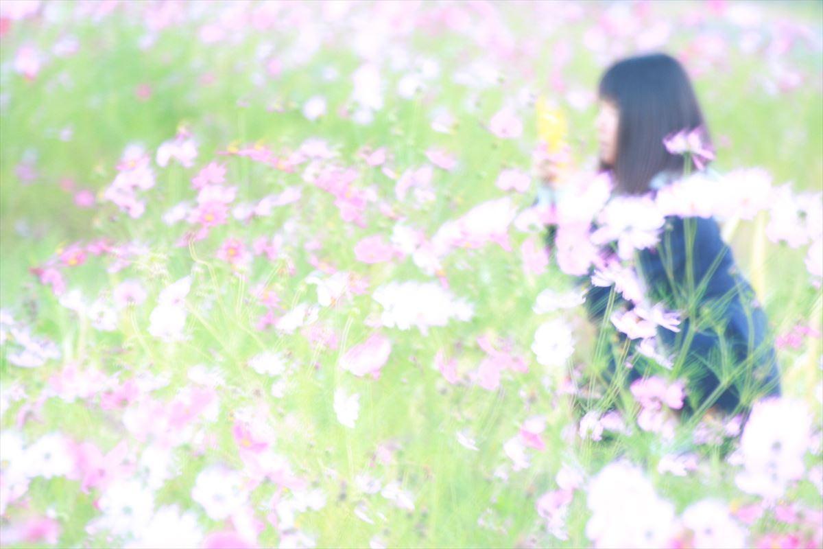 IMG_0040_R.jpg