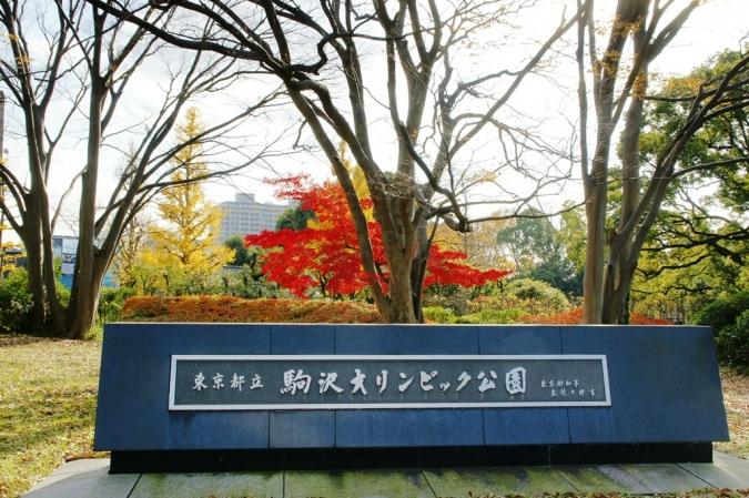 DSC03778駒沢