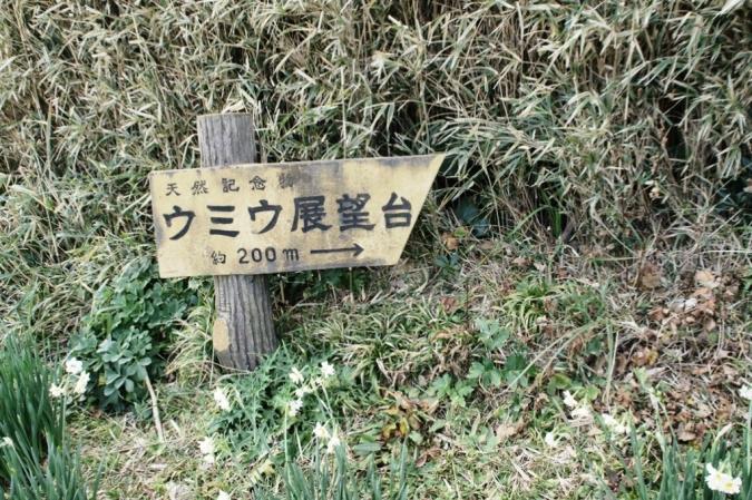 DSC04436三浦
