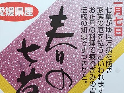 1072016七草S