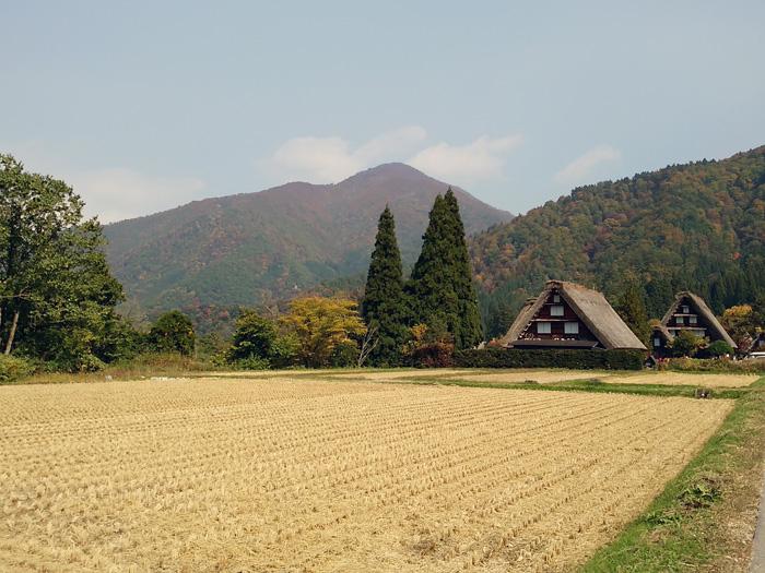 大自然に囲まれた白川郷、 秋はあたり一面が紅葉一色へと染まってゆきます ②