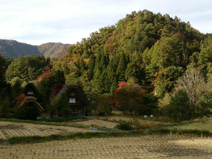 ☆紅葉が美しい白川郷を満喫! ③