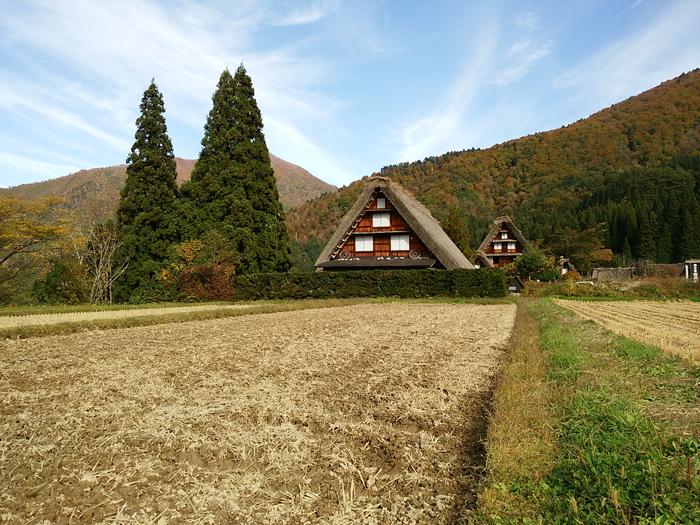 ☆紅葉が美しい白川郷を満喫! ⑤