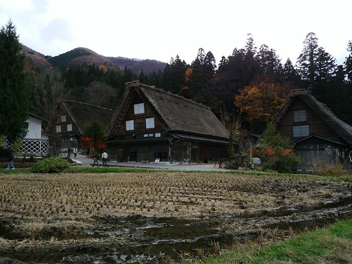 晩秋の紅葉~初冬は雪化粧など四季それぞれに変化する白川郷の表情も魅力的 ⑦