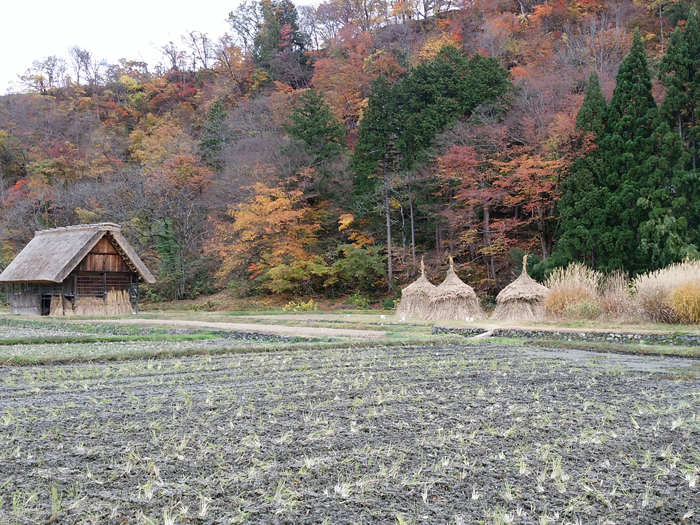 晩秋から初冬が良い季節。 紅葉や初冠雪など四季の移ろいが特に際立つ風景も ④