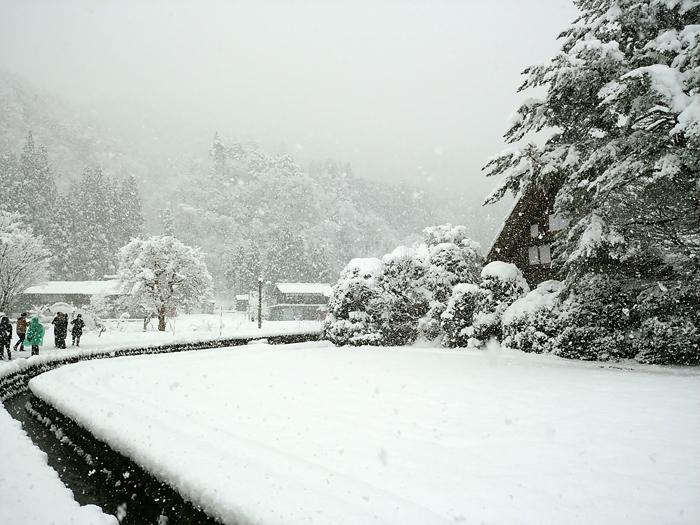 新年のオススメ旅行!幻想的な雪の合掌集落、白川郷のライトアップ!②