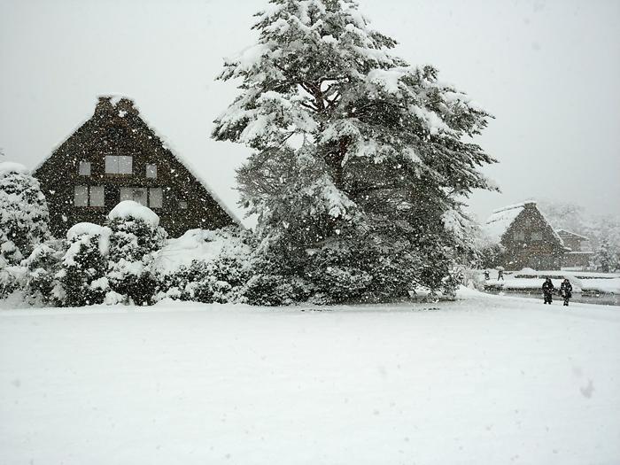 新年のオススメ旅行!幻想的な雪の合掌集落、白川郷のライトアップ!③