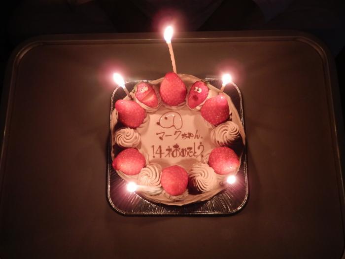 ケーキ点灯