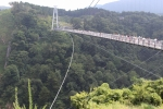 九重大吊橋5