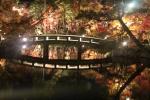 永観堂の橋2