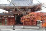 平等院と紅葉2
