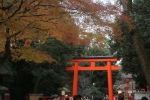 下鴨神社の鳥居1